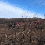 CNE: IV Secção apoia populações fustigadas pelos incêndios em Castanheira de Pera