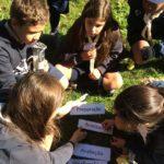 CNE: Escuteiros trabalham liderança na Escola de Fuzileiros
