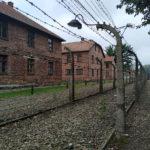 Memória: 75 anos da libertaçãodos campos de Auschwitz-Birkenau