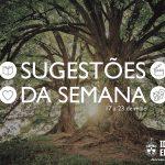 """Sugestões da Semana: """"Laudato Si e o cuidado da Casa Comum"""" – 17 a 23 de maio de 2020"""