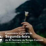 """Igreja em Rede: Segunda-feira da XI Semana do Tempo Comum – """"Amai os vossos inimigos"""" (Mt 5, 38-42)"""