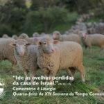 """Liturgia de Quarta-feira da XIV Semana do Tempo Comum – """"Ide às ovelhas perdidas da casa de Israel."""" (Mt 10, 1-7)"""