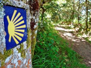 20200710-caminhos-santiago-palmela