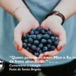 """Liturgia da Festa de Santa Brígida – """"Quem permanece em mim e Eu nele, dá fruto abundante."""" (Jo 15, 1-8)"""