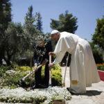 Ecologia Integral: Igrejas cristãs assinalam Dia de Oração pelo Cuidado da Criação