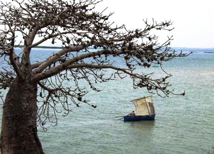 missao_barco2